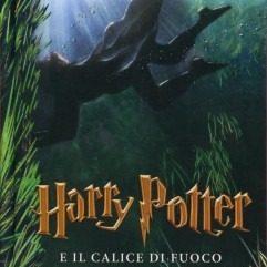 edizione-2014-harry-potter-4